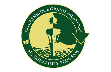 BGV Sustainability Logo
